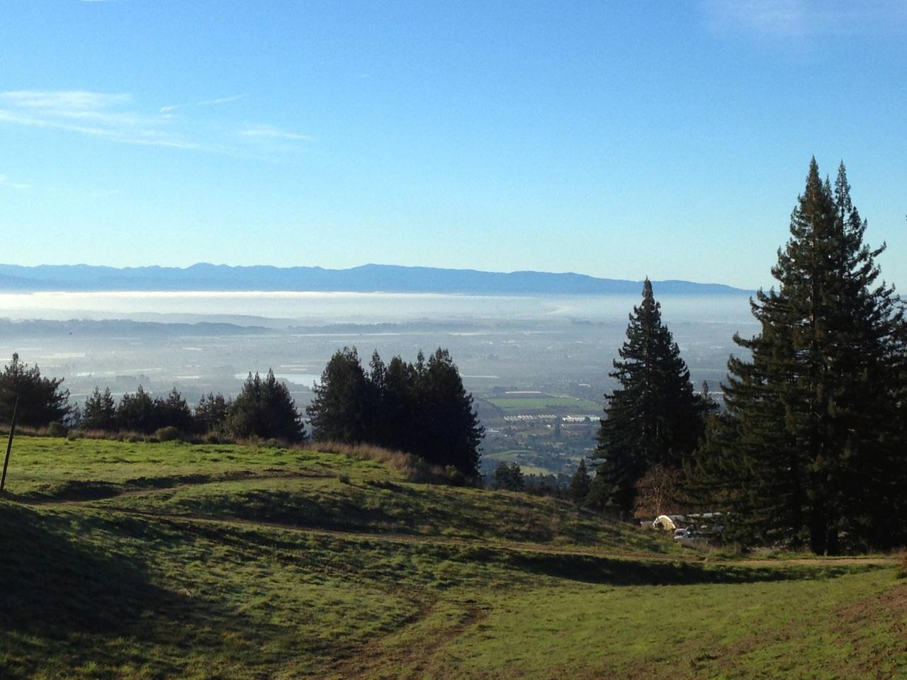 Watsonville Valley Fog