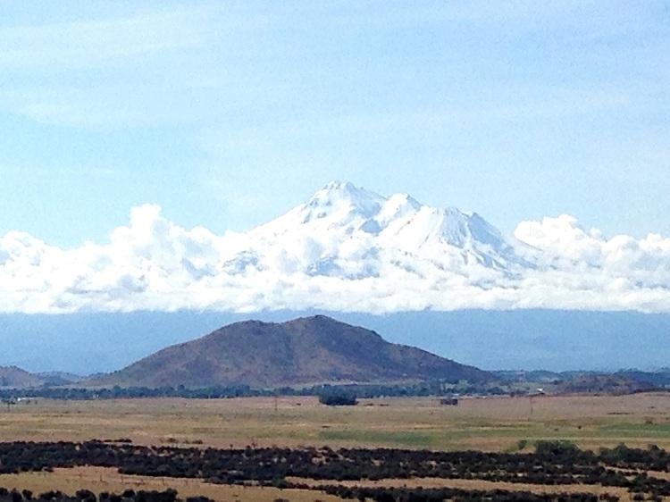 Mt. Shasta 2015