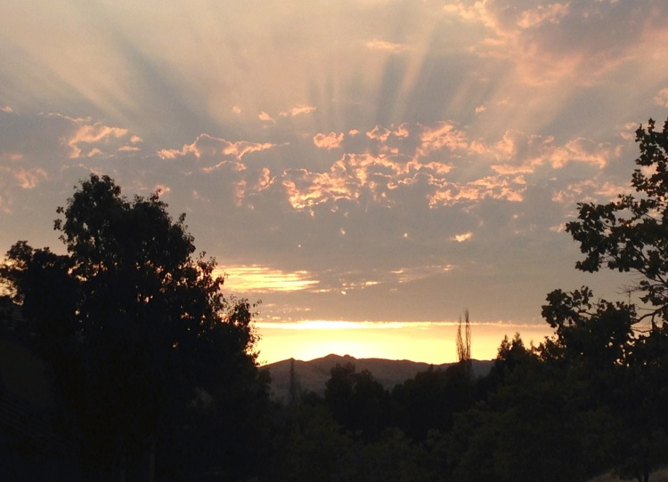 Sunset CWW-1