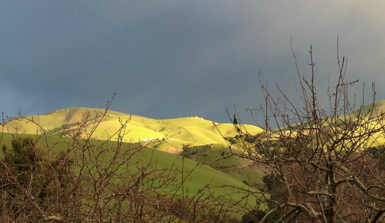 MAC Winter Hills 1