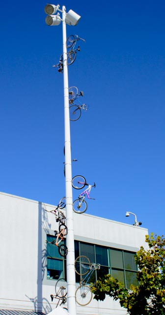 many-bikes-on-pole-1