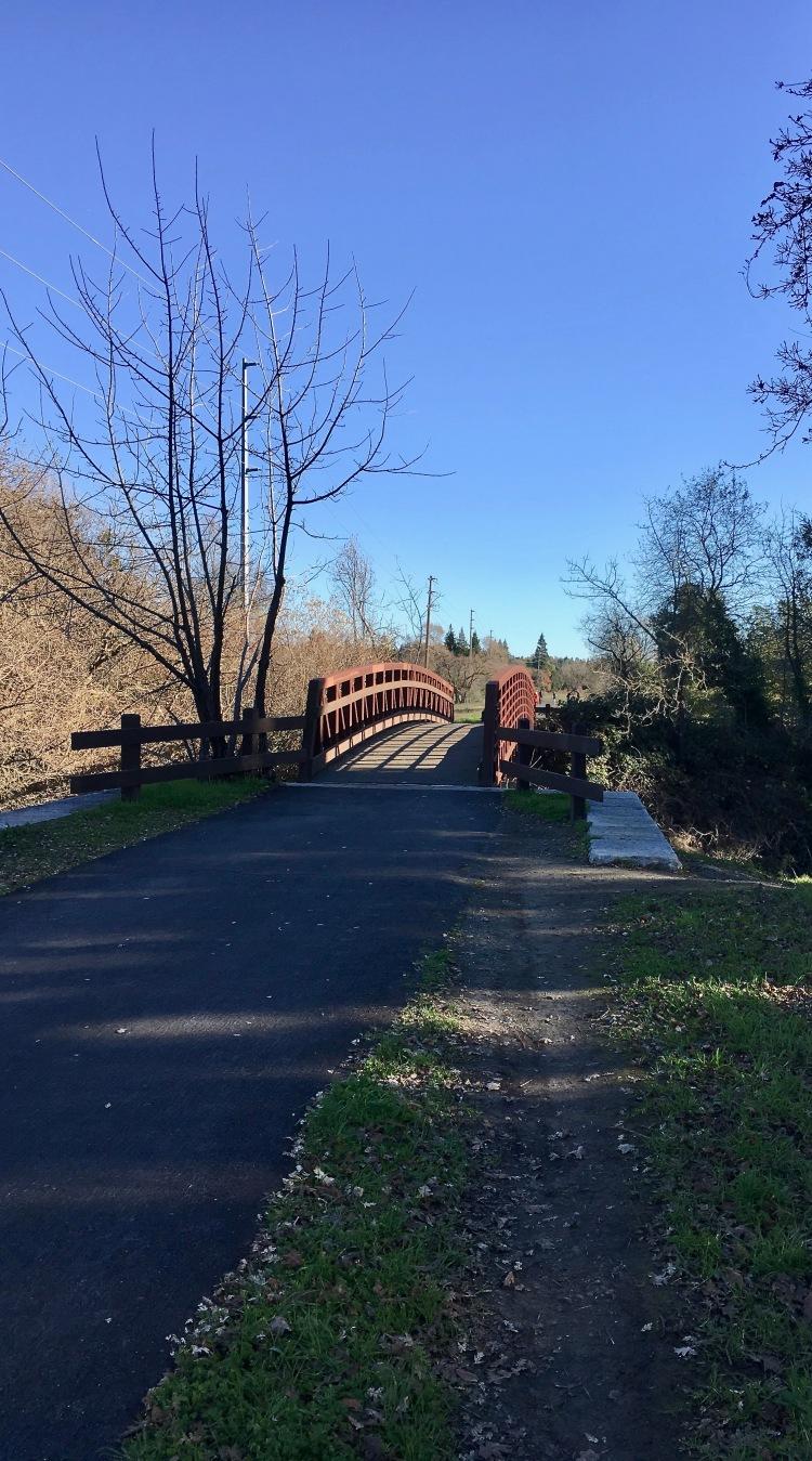 iron-horse-trail-bridge