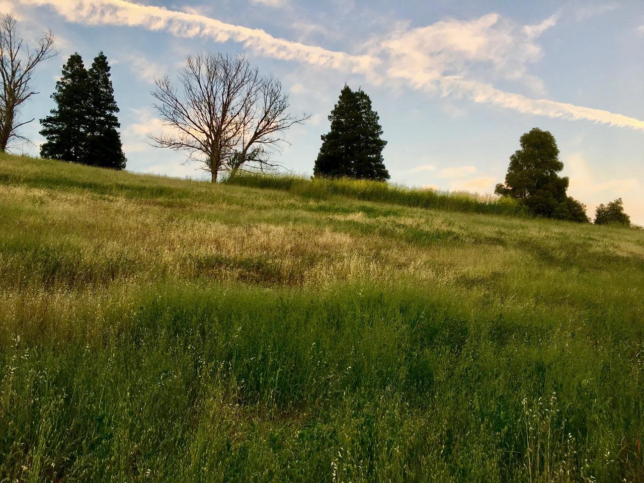 Hill 3