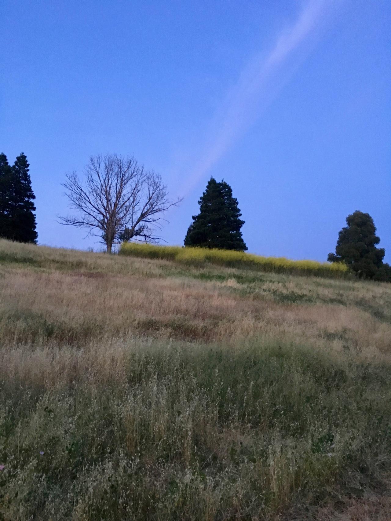Hill at dusk