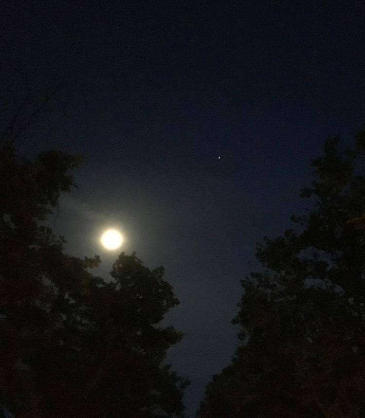 Moon w Star