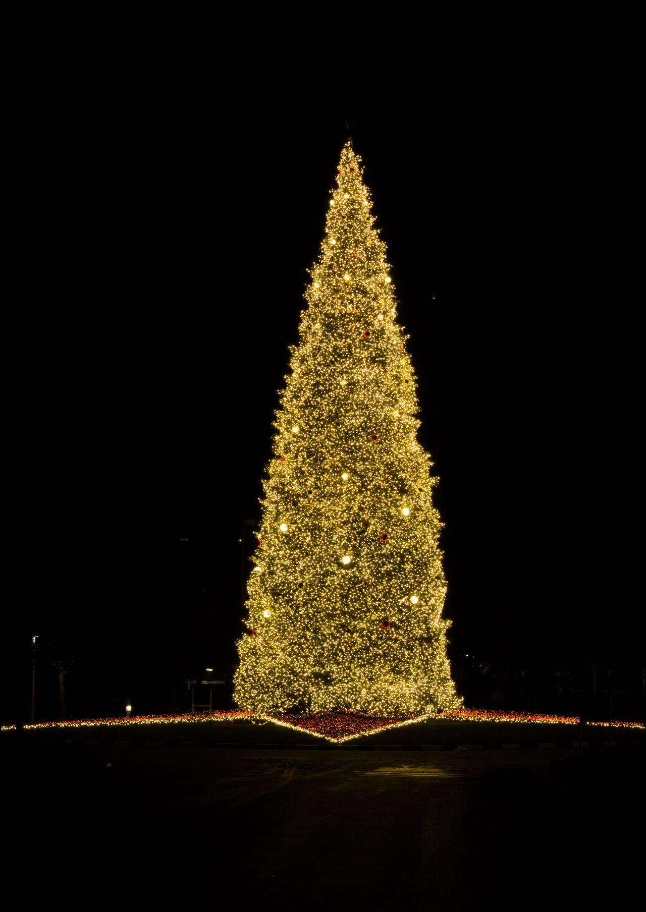 San Ramon Christmas Tree-1540