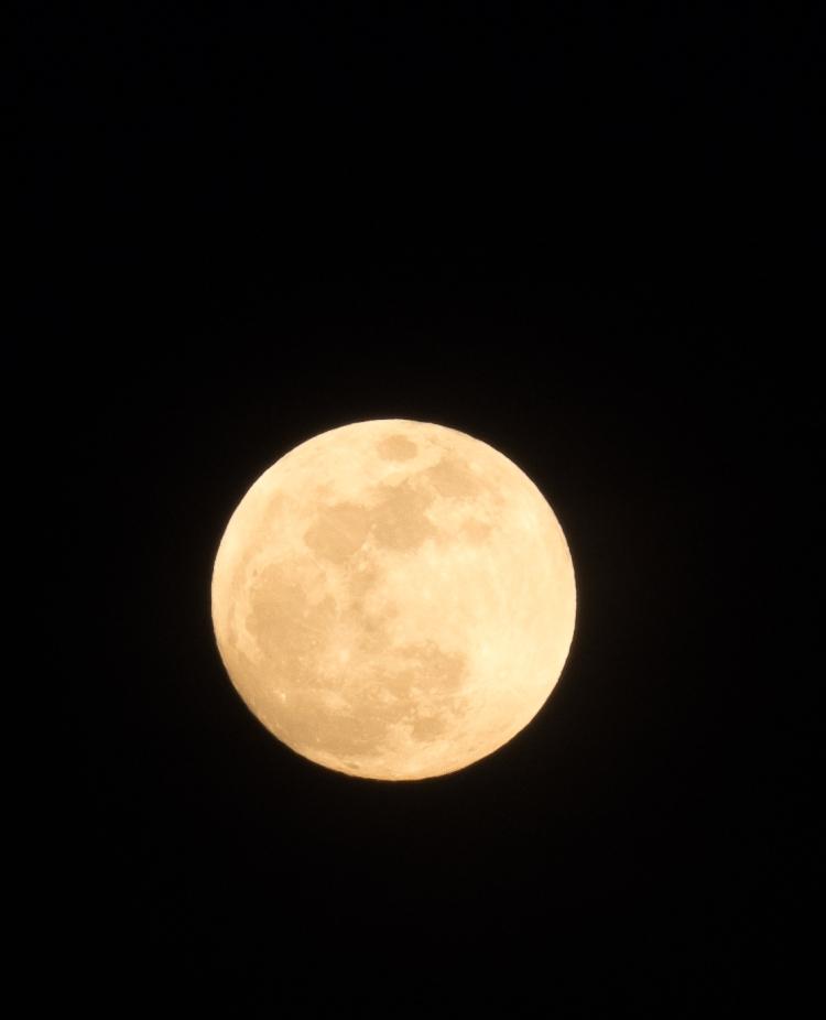 Full moon 1-30-18 1-0077