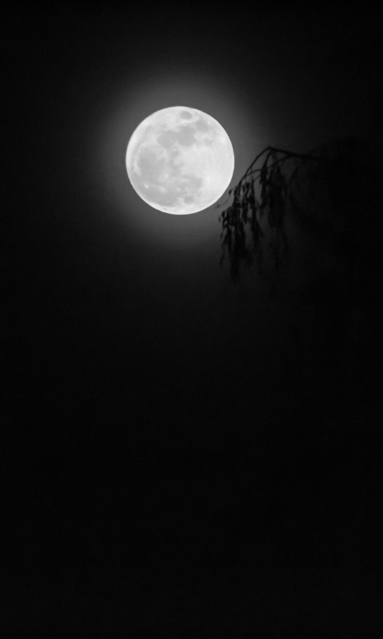 Moon Jan 1 2018 f-1601