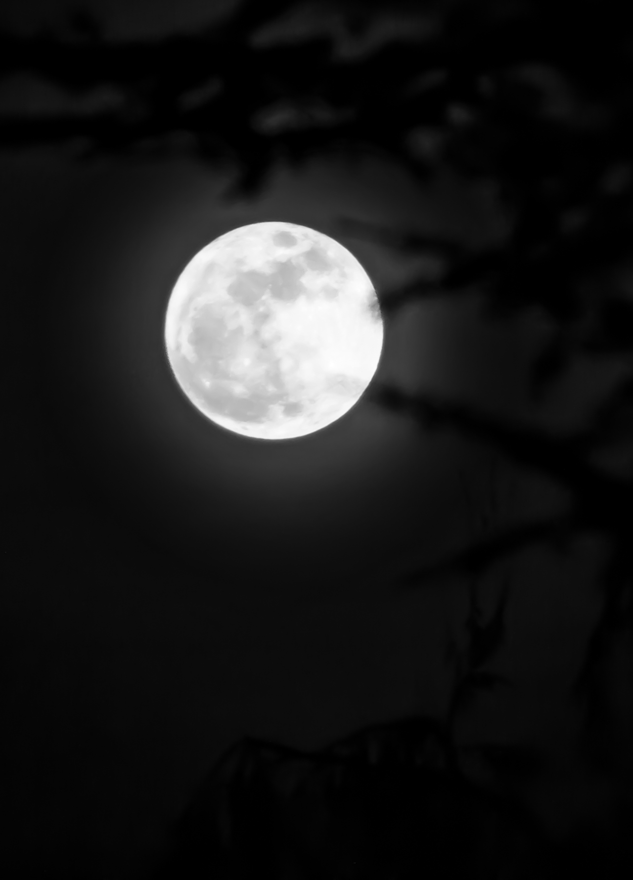 Moon Jan 1 2018 f-1614