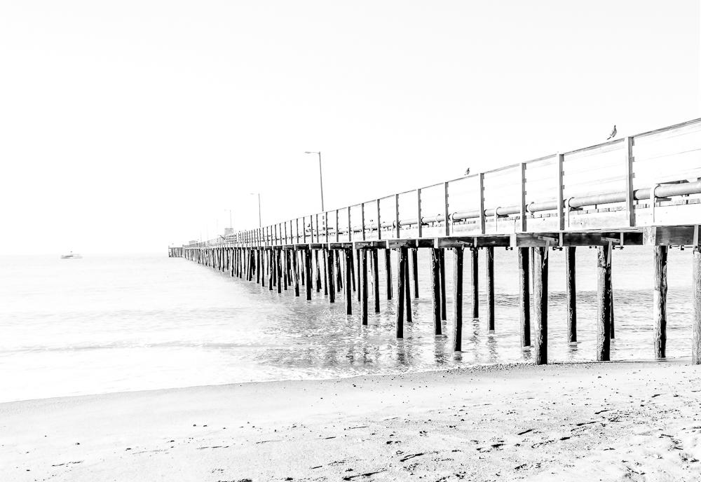 Avila Beach Pier B&W 1-0394