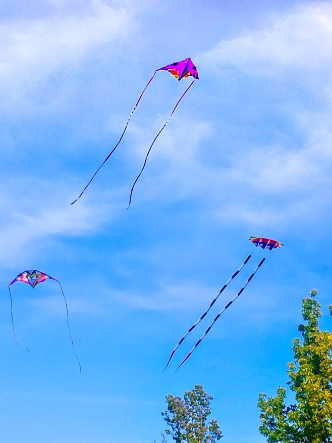 3 Kites - Dublin-4719