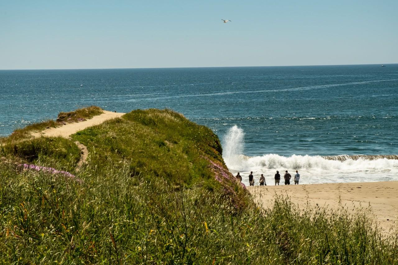 Beach day - Santa Cruz-1263