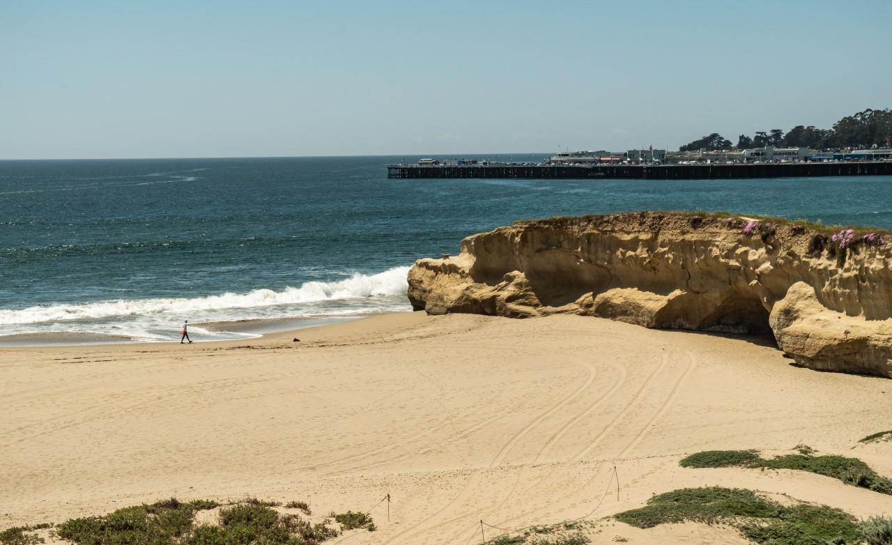 Beach day - Santa Cruz-1294