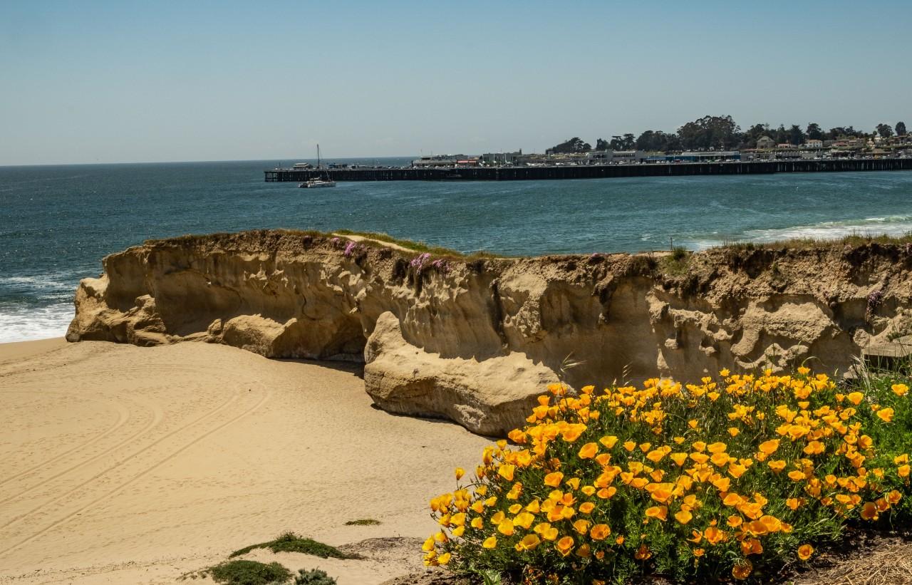 Beach day - Santa Cruz-1336-2