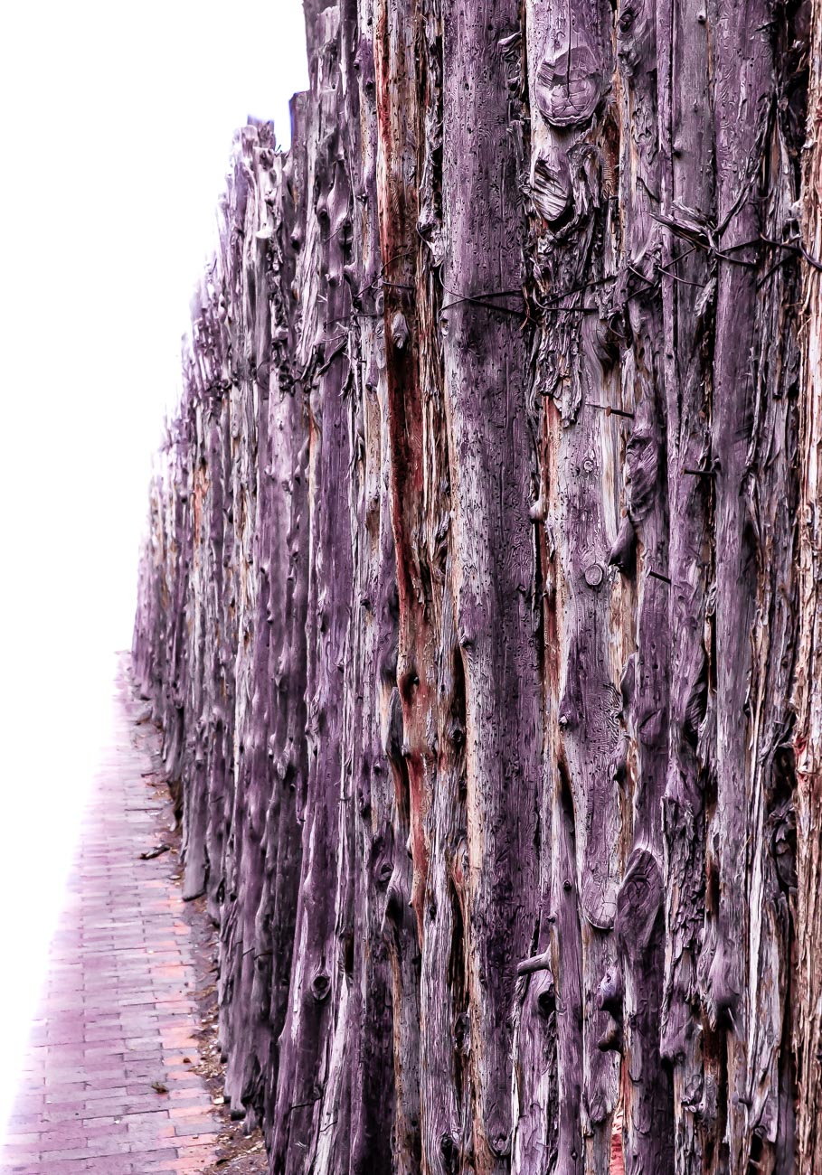 Coyote fence Santa Fe 12-1855