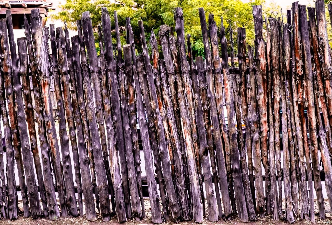 Coyote fence Santa Fe -1853
