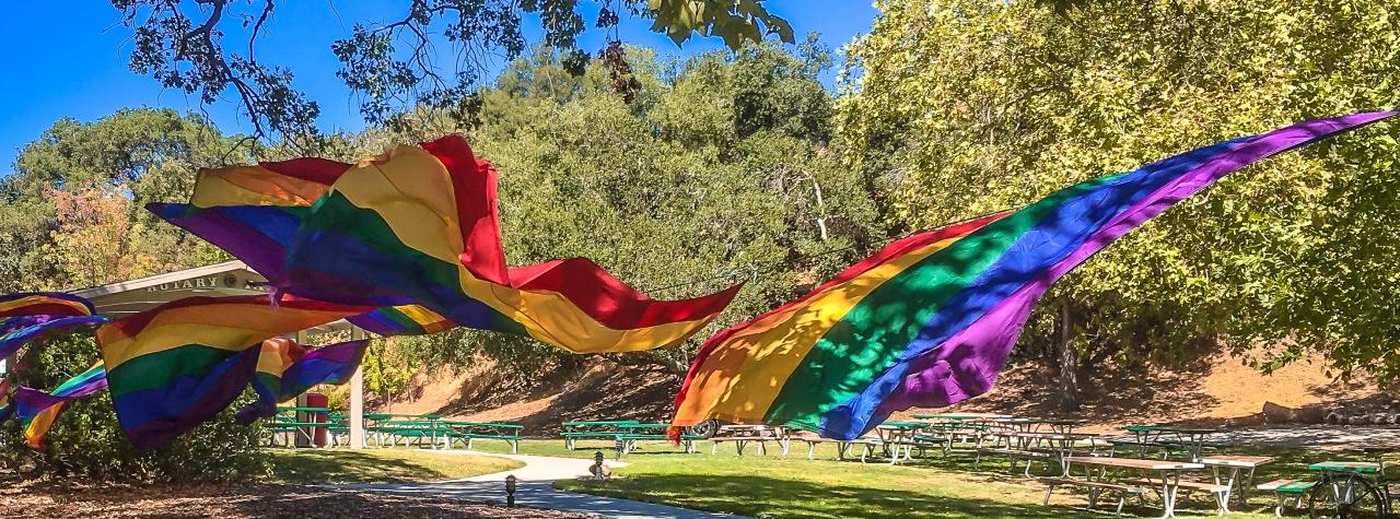 Rainbow flags-5340