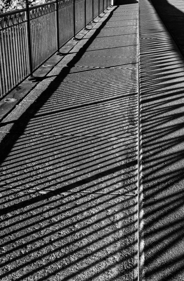 WW-Striped path Benicia-2662