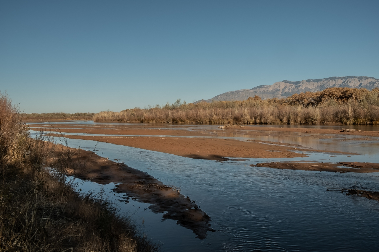 Afternoon along the Rio Grande-2810