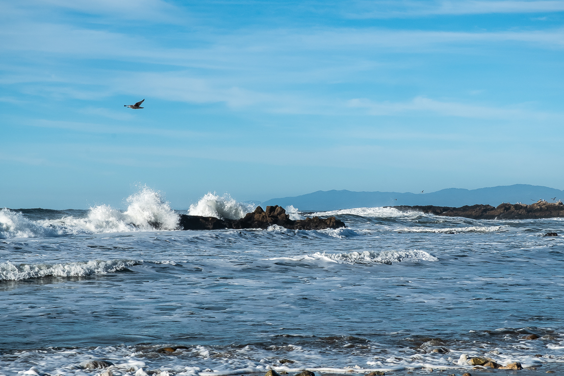 Pescadero Beach-2984
