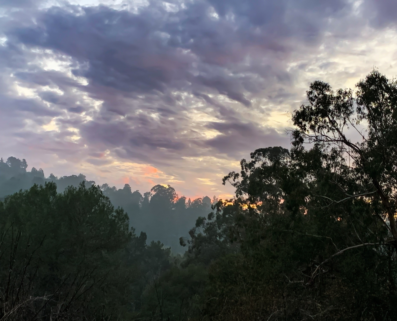 Tilden Park – sunset