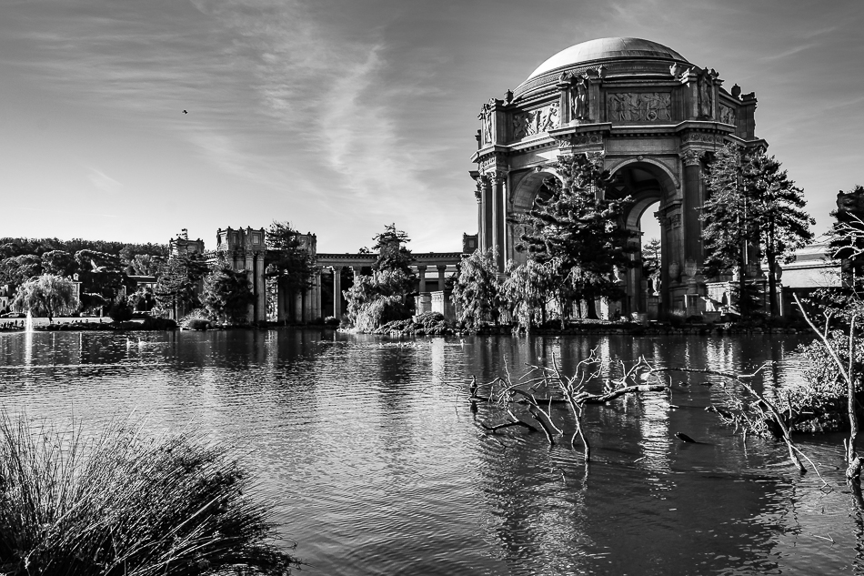 palace of fine arts b&w-3110