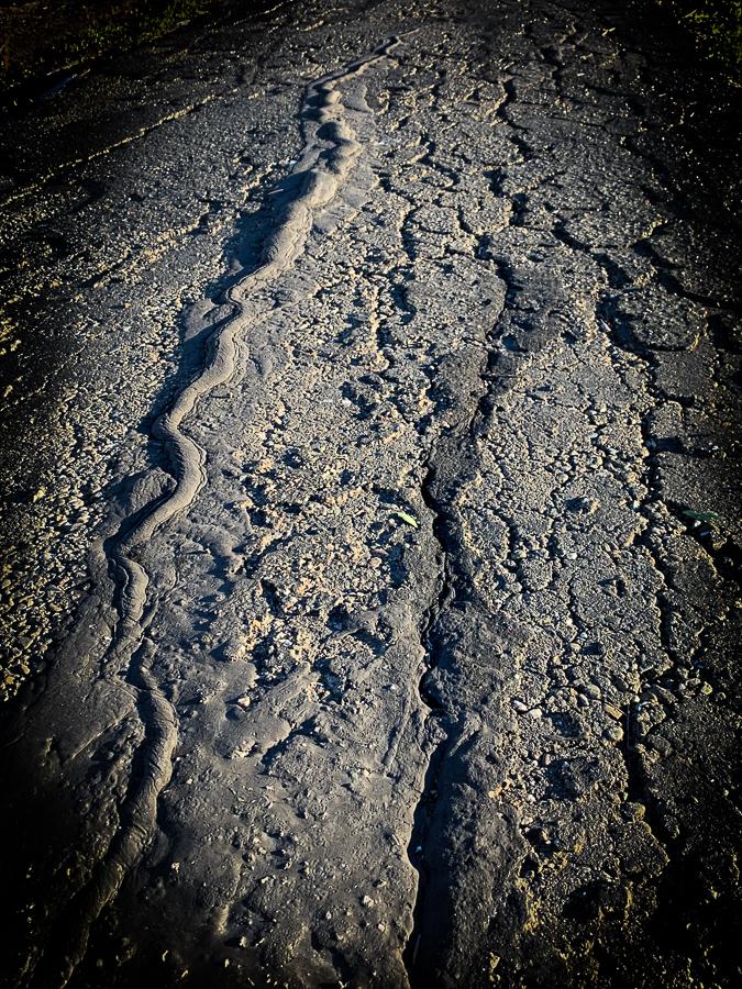 subterranean ashpalt snake-