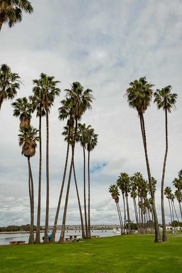 N Harbor Dr. San Diego-3396