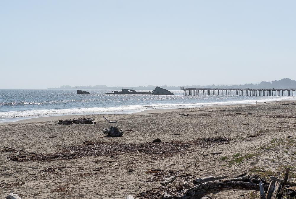 Seacliff Beach-4864