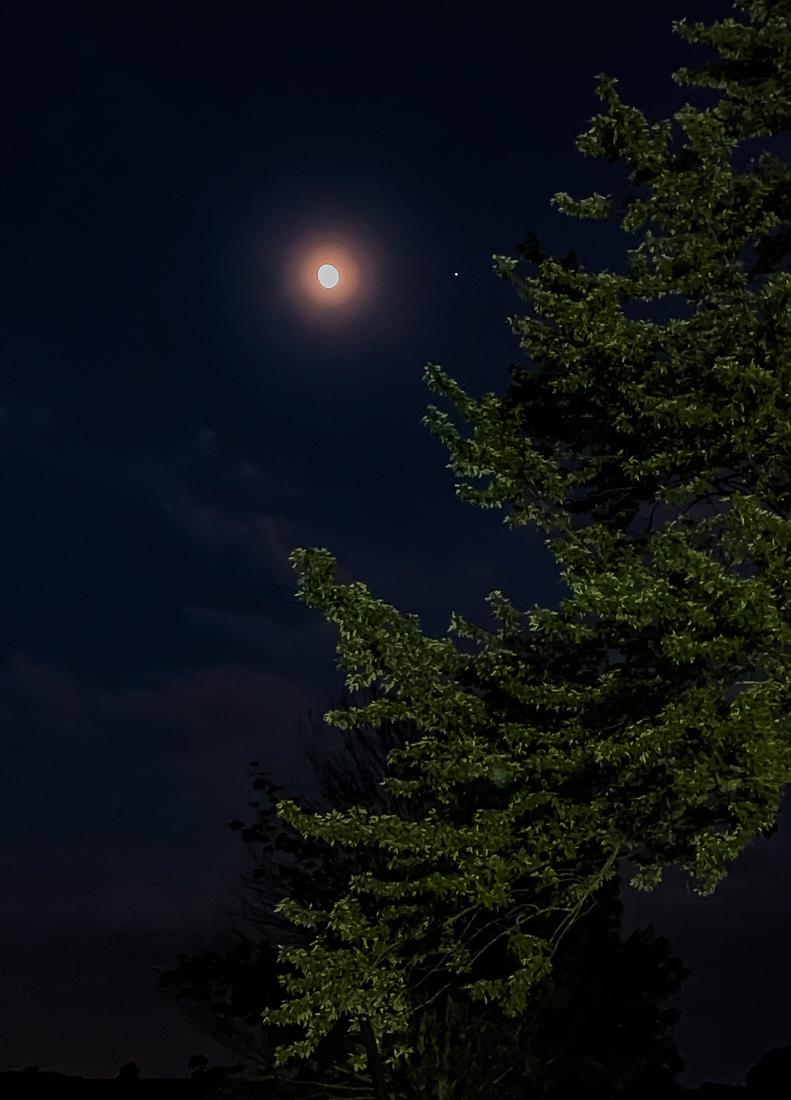 Devi Bhava moon