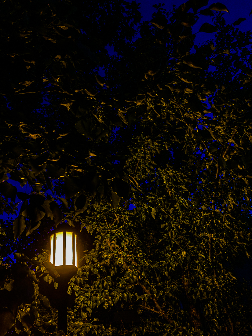 Neighborhood lantern-7153