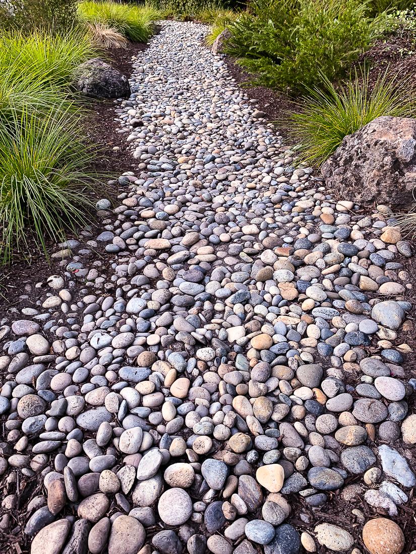 WW-Rocky path-7551