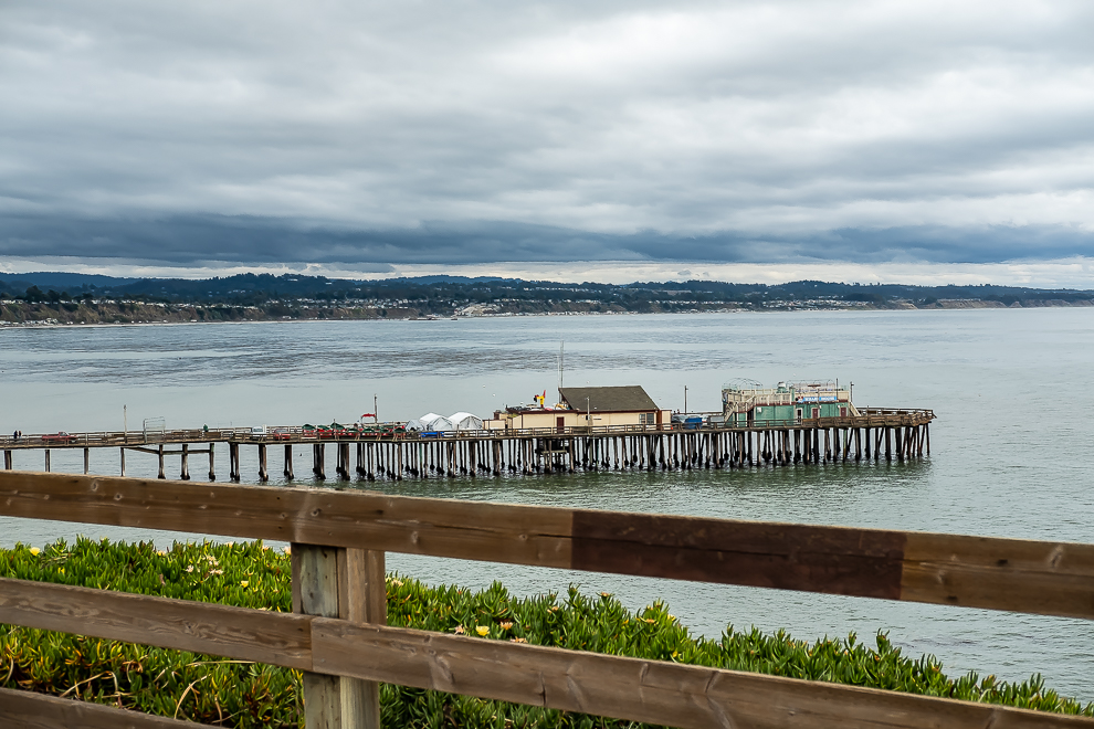 Hanging out with the birds - Capitola-5719