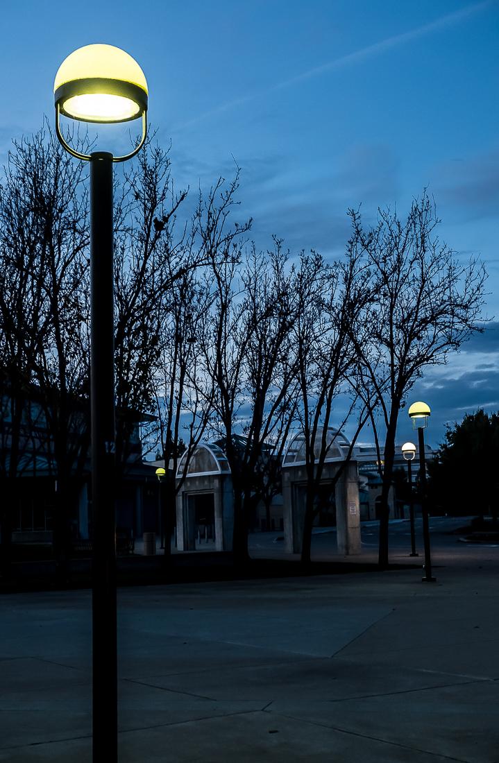 Night Life - Street Lamps-5848