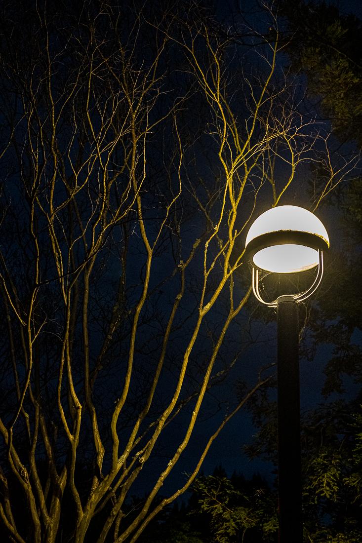 Street Lamp-Central Park