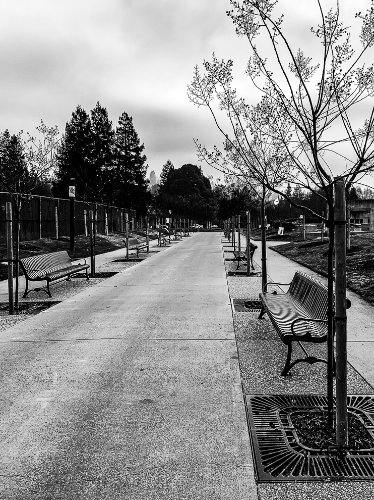 Monochrome Mondays: Benches waiting for the storm