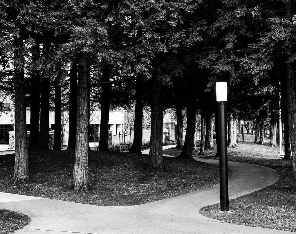 WW-Paths w Street lamps - Comm. Center-0330