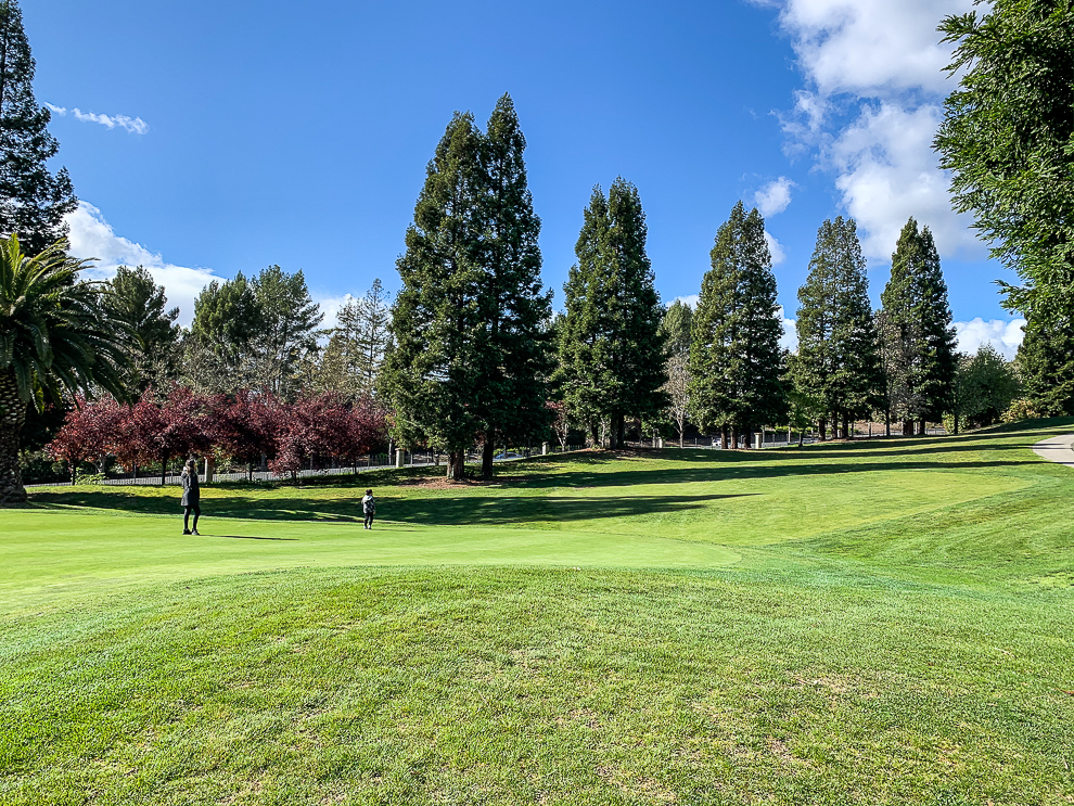 A golf course transformed by COVID19