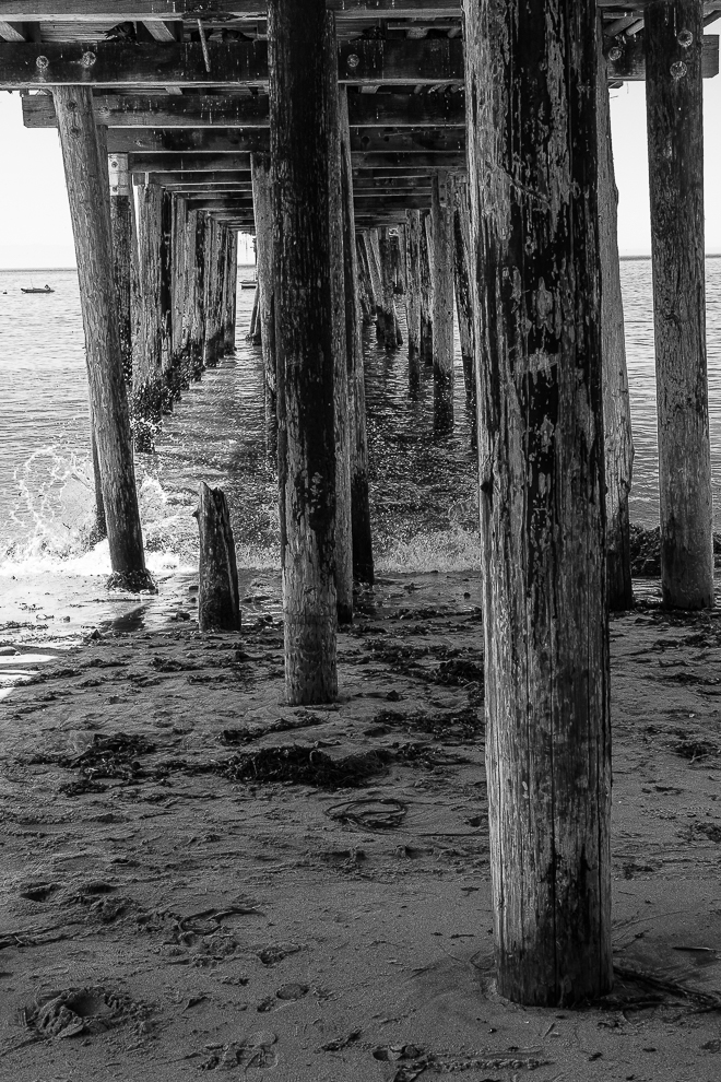 MM-Beneath Capitola pier-0186