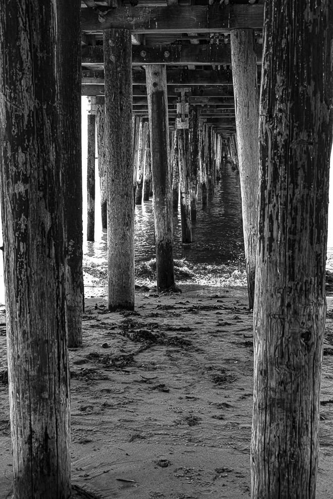 MM-Beneath Capitola pier-0196