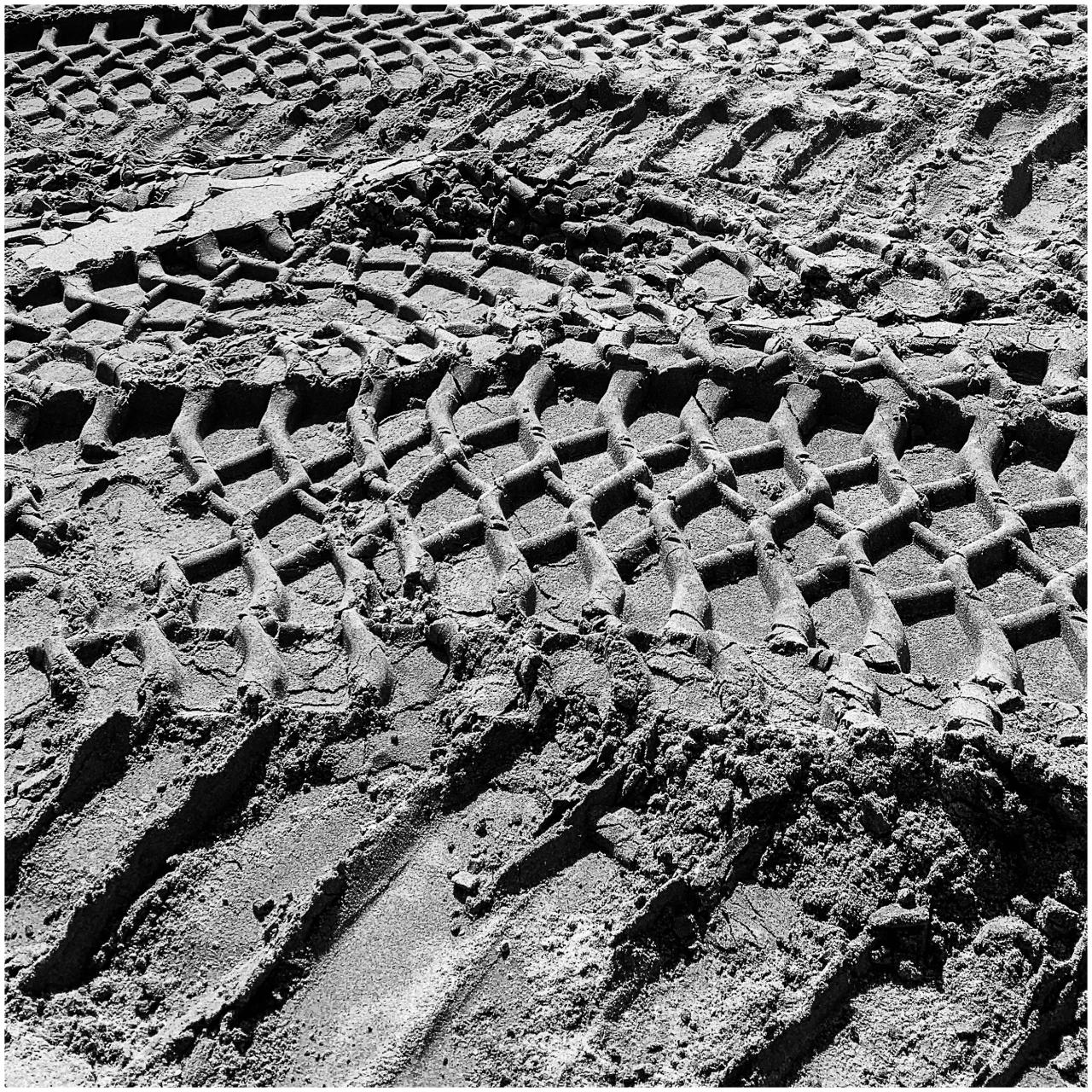 Monochrome Mondays: Tracks